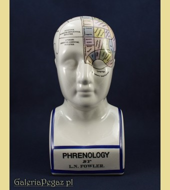 Głowa freonologiczna